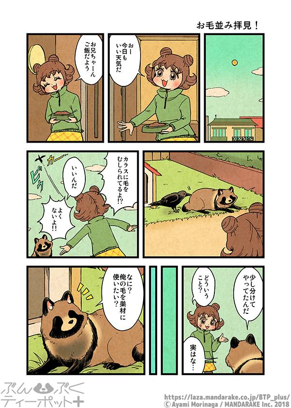 473:お毛並み拝見!≪1≫.png